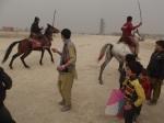 Kites and Horses
